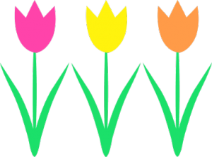 tulips-300x222.png